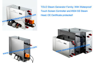 China Automatic Wet Portable Steam Generator supplier